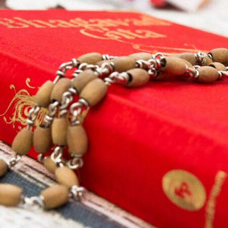 4.1 Studio della Bhagavad Gita